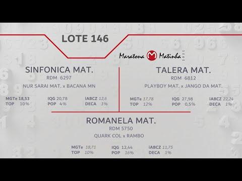 LOTE 146 Maratona Matinha