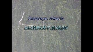 Дождь, стихия. Украина, Вишневое, Киевская обл. 25.07.18