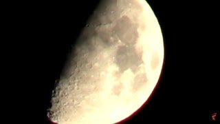Squatch Zone 2nd night in infrared Live Stream