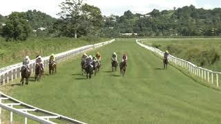 Vidéo de la course PMU PRIX DE L'ANSE MICHEL