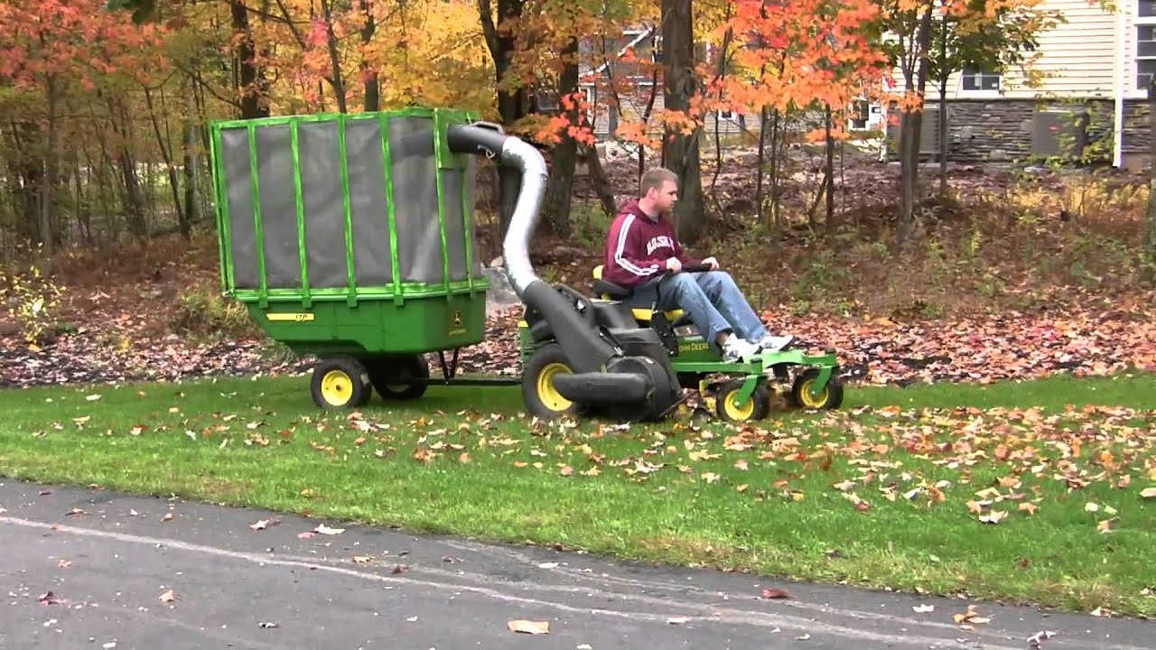 How Remove Leaves Lawn