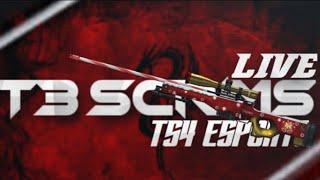 TS4 Esports Pro league scrims