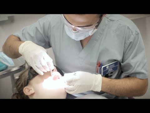 Schulich Medicine & Dentistry - Dental Education Profile