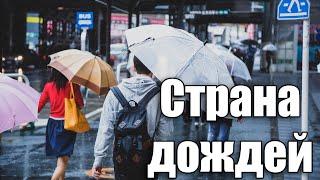Цую - Сезон Сливовых Дождей в Японии [Шамов Дмитрий]
