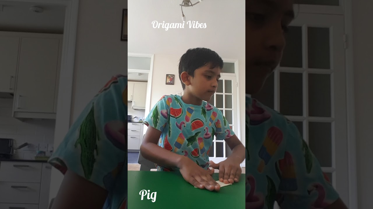 Origami with Aayu