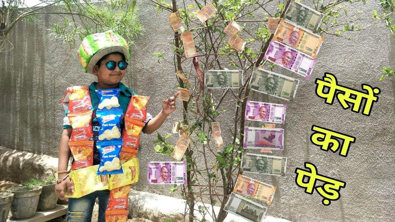 पैसों का पेड़ | MONEY TREE | marwadi comedy