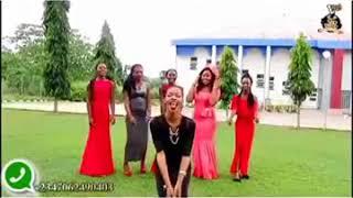 Compilations of Laugh pills comedy Bro Solomon