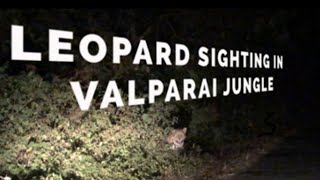 VALPARAI JUNGLE || NIGHT SAFARI || PART 3 || KERALA TRIP || LEOPARD SIGHTING || WILD LIFE  VALPARAI