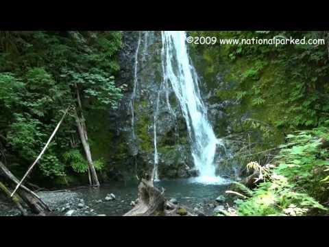 Madison Creek Falls - Olympic
