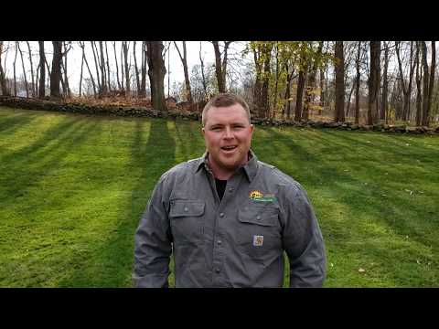 our-story---green-meadow-lawn-care-of-ellington