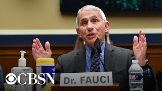 Watch live: Fauci and health officials update Senate on returning to work and school amid COVID