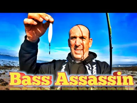 Harbour Fishing For Bass - Lure Fishing For Bass With The Seeker!!