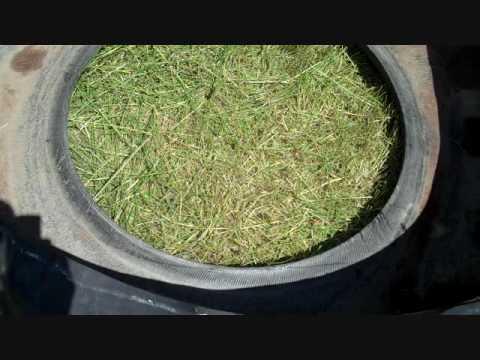 Installing a tire livestock watering tank
