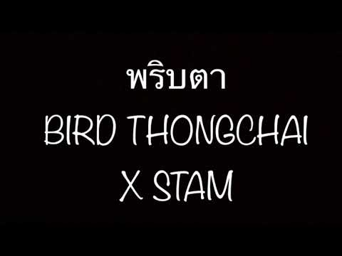 พริบตา - BIRD THONGHAI X STAM Cover By Aoy & Tong (MV)