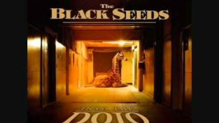 The Black Seeds - The Prince