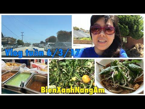 Vlog tuần 6/3/17: Thăm vườn cây plum,cà chua,mua đồ online, cuối tuần mua bún hò huế, thăm con mèo