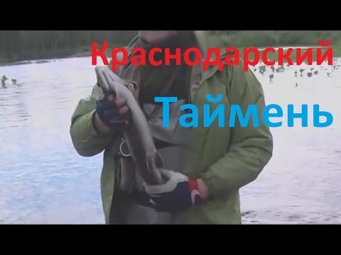 ловля нахлыстом в краснодарском крае