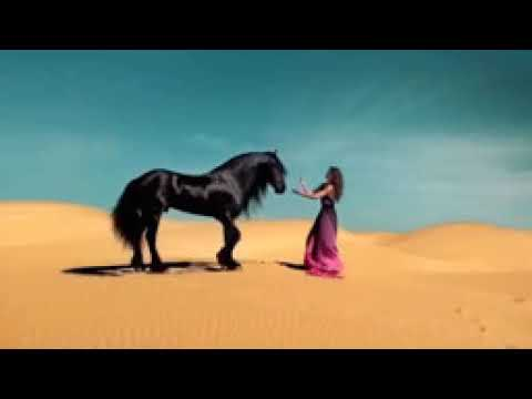 Duniya دنيا Arabic Song Арабски Кючек 2018 HD Music Video   YouTube