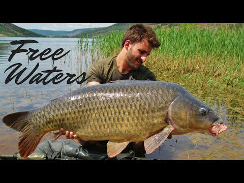 roberto ripamonti carp fishing supplies