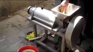 Соковыжималка промышленная 500 кг/час для фруктов и овощей