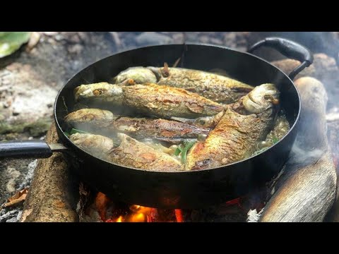 Spearfishing Catch And Cook