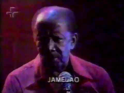 Programa    Trecho   Ensaio   Jamelão   Tv Cultura   199