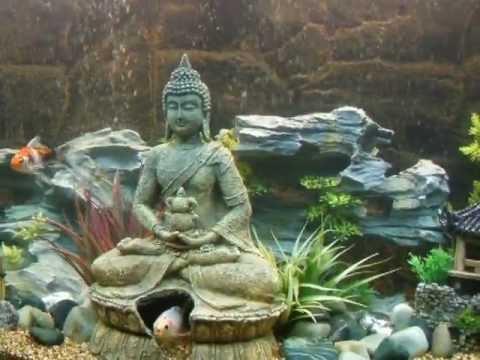 Oriental Aquascape Aquarium Youtube