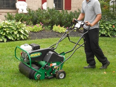 PennyGreen - How to properly Thatch / Aerate / Seed your lawn