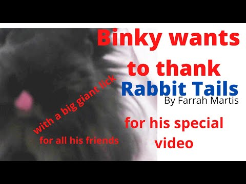 BINKSTA Thanks Rabbit Tails COCO And CLOCKLATE & To EVERYONE For Prayers!!!