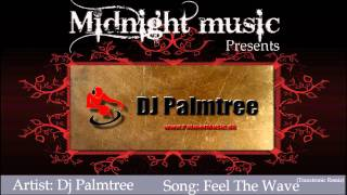 Dj Palmtree - Feel The Wave (Traxxtronic Remix)