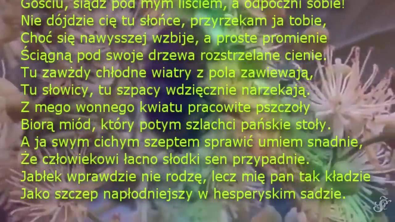 Na Lipę Jan Kochanowski