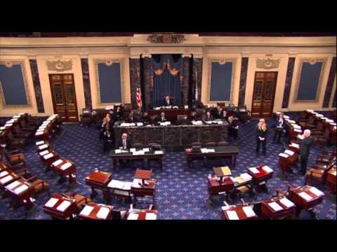 Raw Video: Spectator Disturbs U.S. Senate