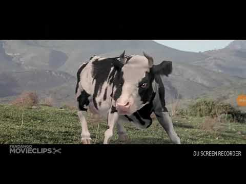 Cow fight : kung pow 2002 HD