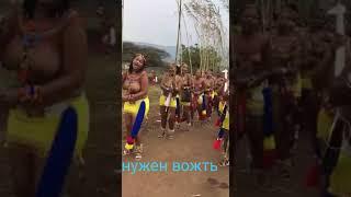 Племена Африки