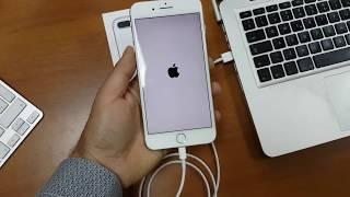 GUIDA Come eseguire il ripristino del dispositivo da un Backup diTunes (iPhone 7 plus)