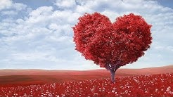 """Peaceful music, Relaxing music, Instrumental Musc """"Endless Love""""  Happy Valentines Day"""