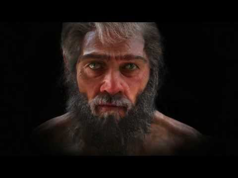 6 million years of human evolution in 1 minute