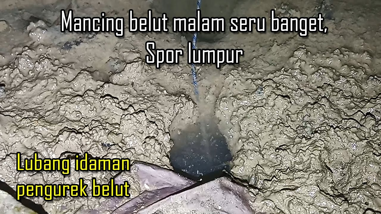 Spot Mancing Jawa Timur