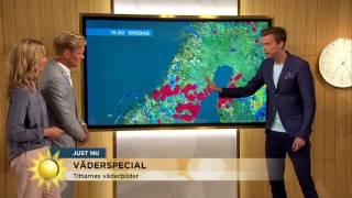 Varning för åska – meteorologens 4 bästa råd! - Nyhetsmorgon (TV4)