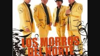 DOS BOTELLAS DE MEZCAL:   LOS MORROS DEL  NORTE