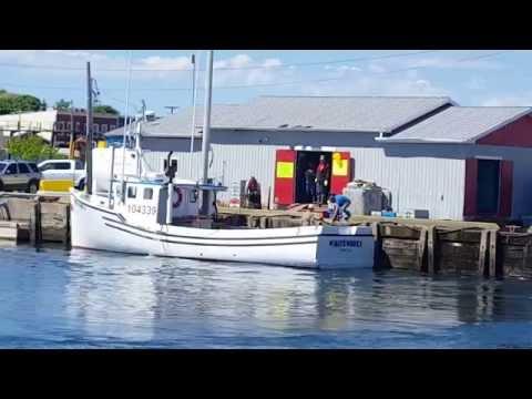 North Sydney, Cape Breton Lobster Fishermen 24 June 2016