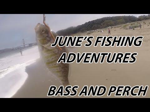 June's FISHING ADVENTURES Around Northern California's Bay Area!