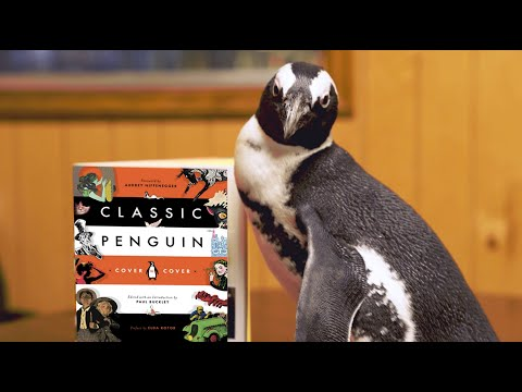 "A Real Penguin's ""Internship"" at Penguin Random House"