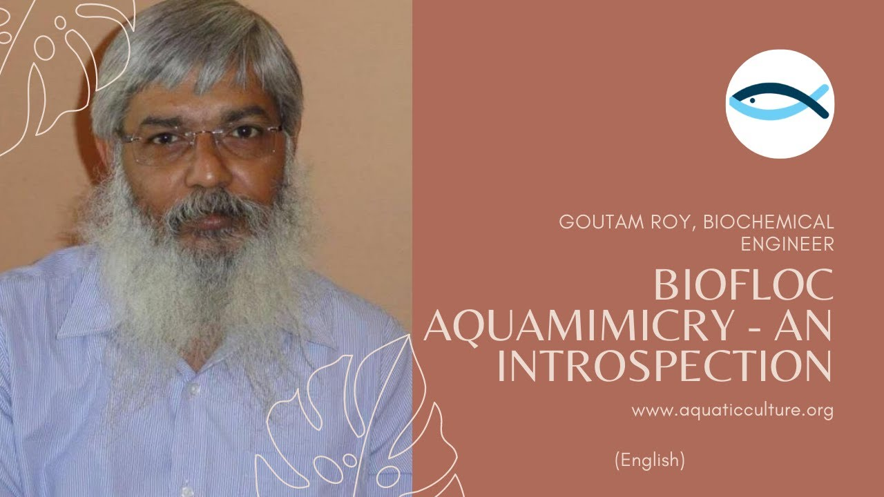 Aquamimicry - An Introspection By Goutam Roy (English)