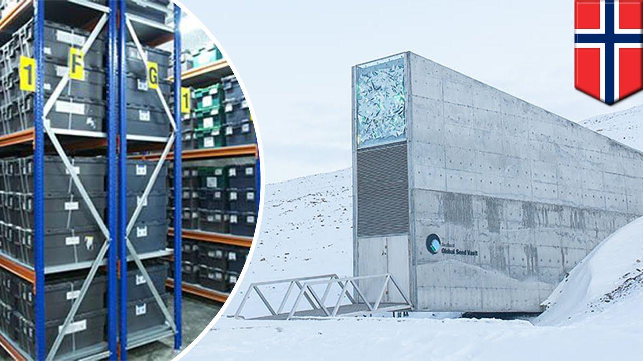 Doomsday Vault Norway How The Svalbard Global Seed Vault Works