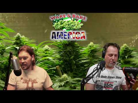 Wake & Bake America 579 Falling Prohibition In Places Like Texas & Rhode Island