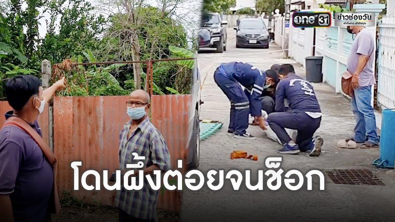 ชายวัย 52 ยกพวกไปตีผึ้งหลวง พลาดท่าถูกรุมต่อยดับ   ข่าวช่องวันเสาร์อาทิตย์   ข่าวช่องวัน