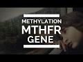 MTHFR gene mutation - EASY TO UNDERSTAND- Methylation - What are MTHFR mutation symptoms?