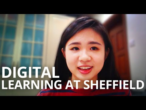 How Does Digital Teaching Work at University? | The University of Sheffield