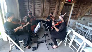 Bridgerton: Spring Recomposed by Max Richter performed by String Quartet